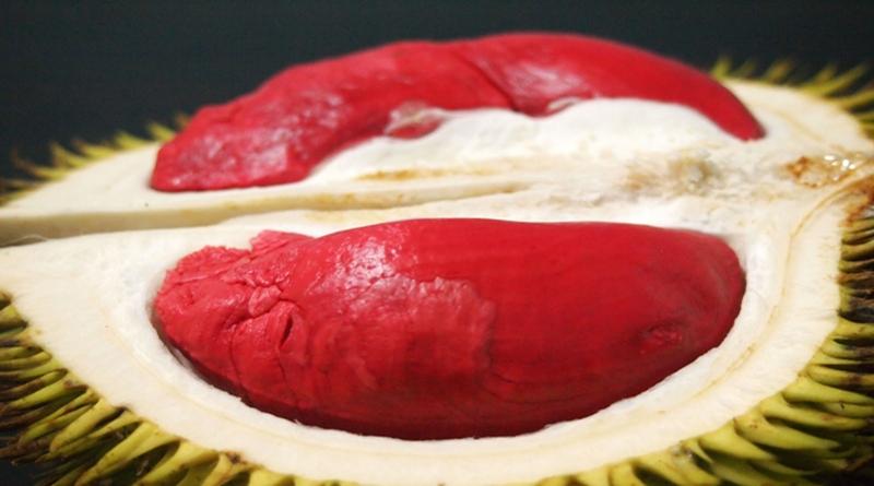 Mau Coba Sensasi Rasa Durian Merah Banyuwangi? Ini 5 Fakta Menariknya
