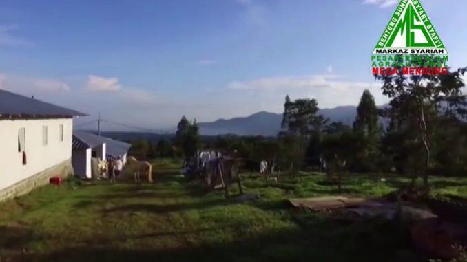Yuk Nyantri di Pesantren Alam dan Agrikultural Milik Habib Rizieq Syihab